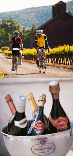 Wine Country Biking Trips